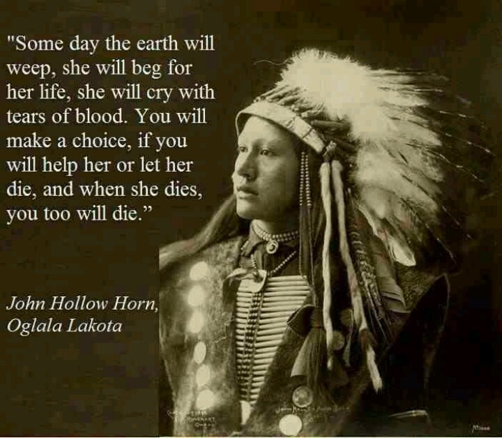 Environmental Quote By Native Americans 1 Picture Quote #1