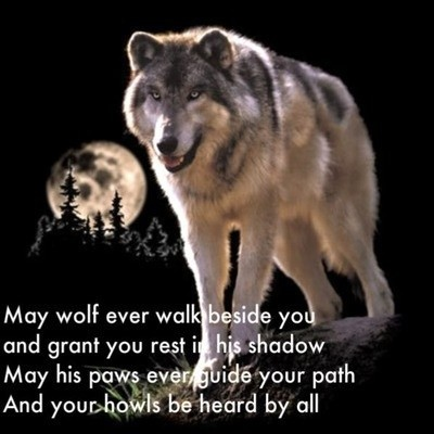 Native American Wolf Quote 2 Picture Quote #1