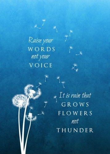 raise your words not your voice. it is rain that grows flowers not thunder Picture Quote #1