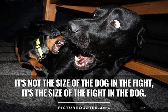 It's not the size of the dog in the fight,  it's the size of the fight in the dog.  Picture Quote #1