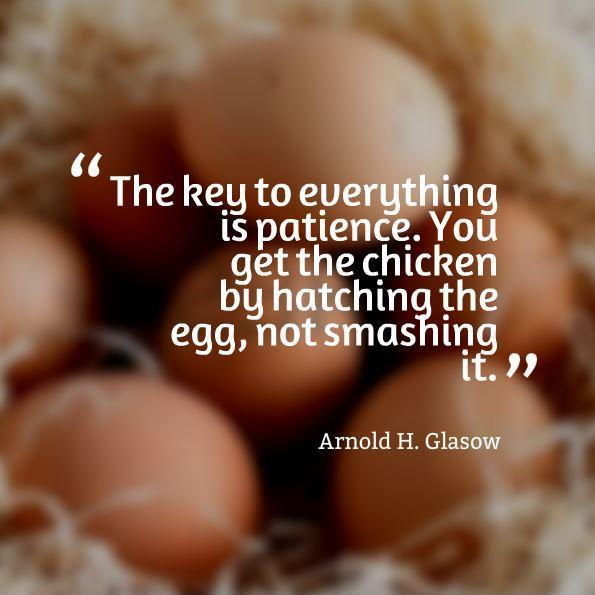 The key to everything is patience. You get the chicken by hatching the egg, not by smashing it Picture Quote #1