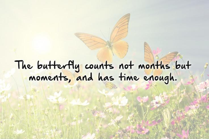 The butterfly counts not months but moments, and has time enough Picture Quote #1