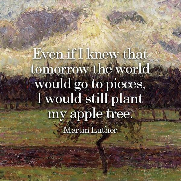 Even if I knew that tomorrow the world would go to pieces,  I would still plant  my apple tree Picture Quote #2