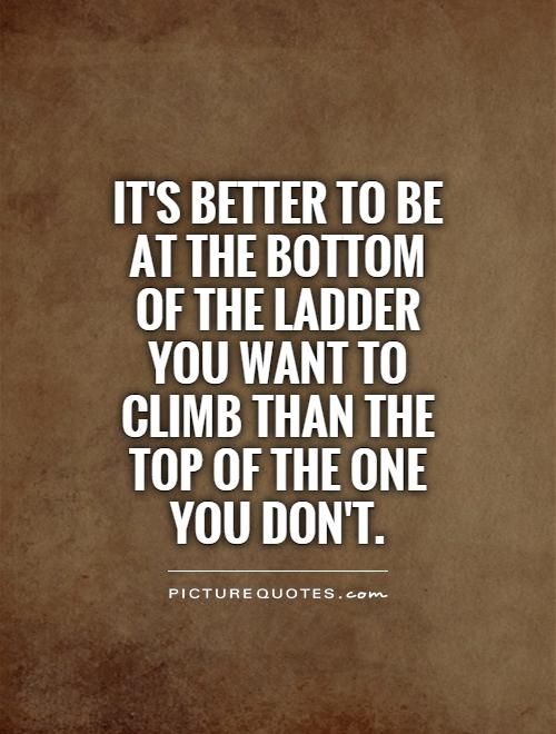 It's better to be at the bottom of the ladder you want to climb than the top of the one you don't Picture Quote #1