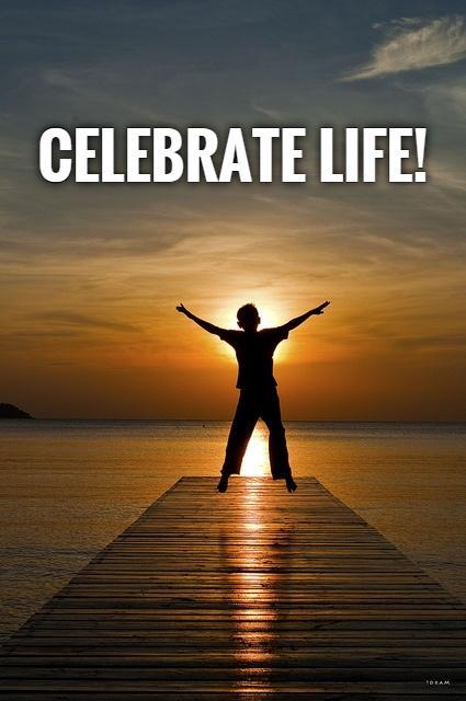 Celebrate Life Quotes Interesting Celebrate Life  Picture Quotes