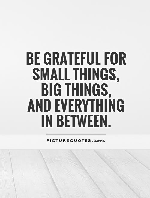 Be grateful for small things,  big things,  and everything  in between Picture Quote #1