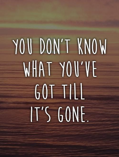 You don't know what you've got till  it's gone Picture Quote #1