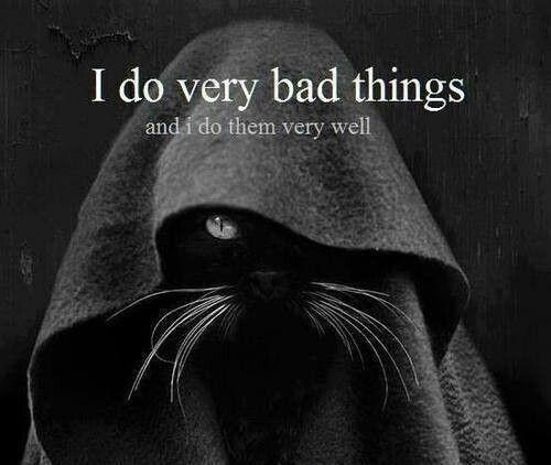 I do very bad things.. and I do them very well Picture Quote #1