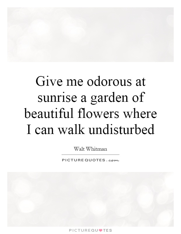 Give me odorous at sunrise a garden of beautiful flowers where I can walk undisturbed Picture Quote #1