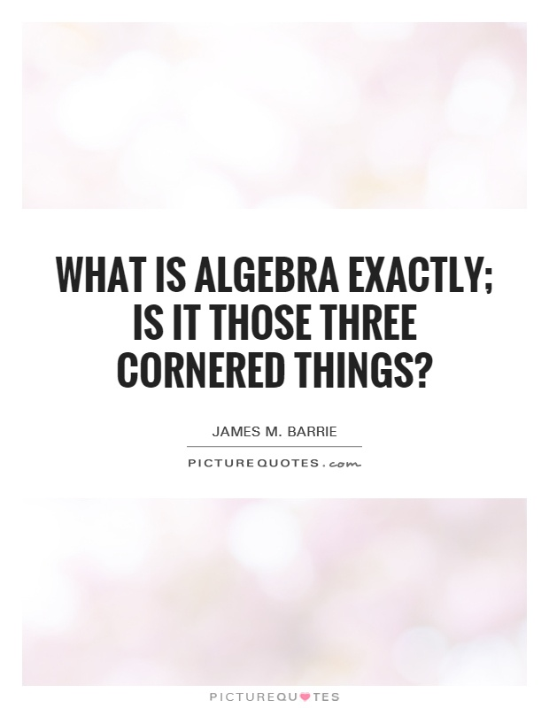What is algebra exactly; is it those three cornered things? Picture Quote #1