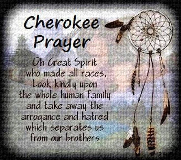 Native American Quotes Sayings Native American Picture Quotes Inspiration Native American Quotes
