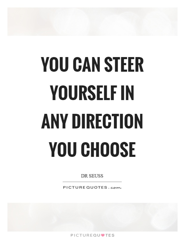 You can steer yourself in any direction you choose Picture Quote #1
