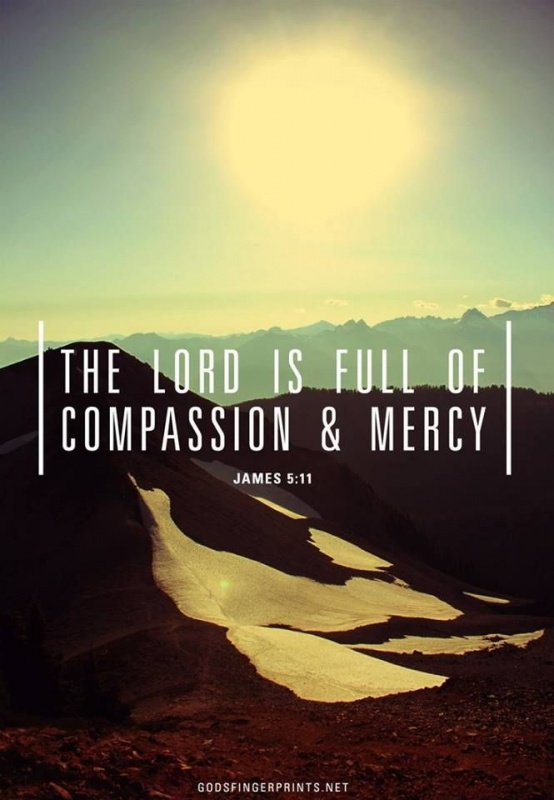 Compassion Quote 1 Picture Quote #1