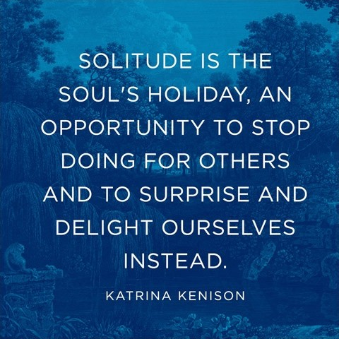 Quotes On Solitude Fascinating Solitude Quote  Quote Number 600063  Picture Quotes