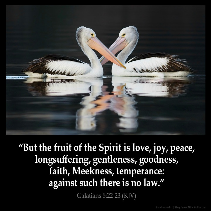 Kjv Inspirational Bible Quote 7 Picture Quote #1