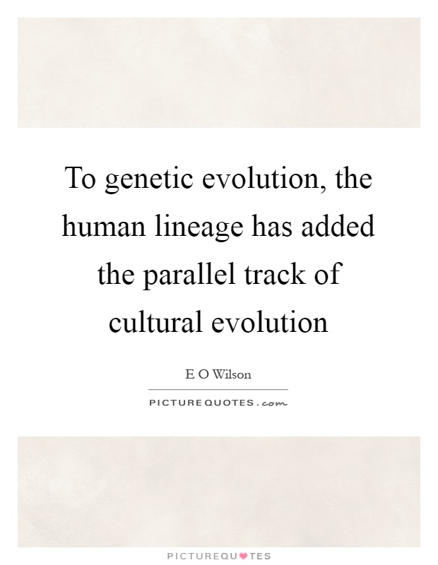 To genetic evolution, the human lineage has added the parallel track of cultural evolution Picture Quote #1