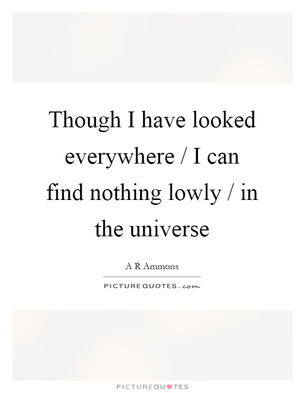 Though I have looked everywhere / I can find nothing lowly / in the universe Picture Quote #1
