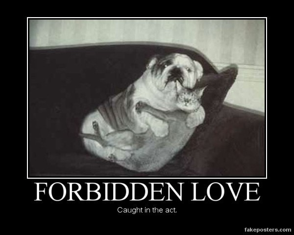 Forbidden Love Quotes U0026 Sayings Forbidden Love Picture Quotes