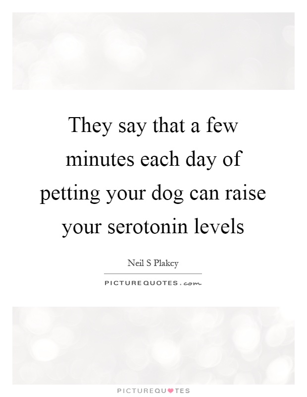 They say that a few minutes each day of petting your dog can raise your serotonin levels Picture Quote #1