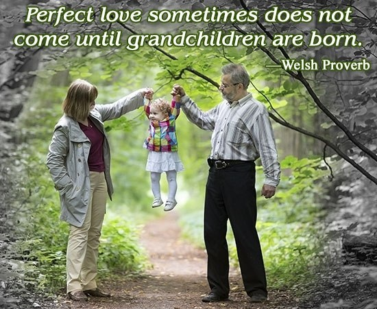 Grandchildren Quote 5 Picture Quote #1