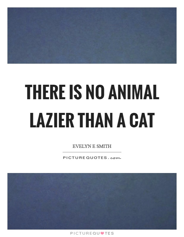 There is no animal lazier than a cat Picture Quote #1