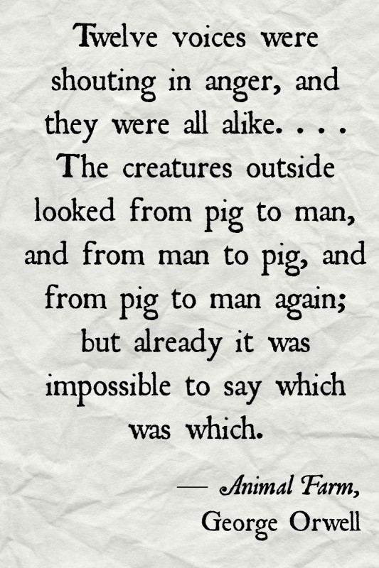 Animal Farm Quotes Adorable Animal Farm Quote  Quote Number 604646  Picture Quotes