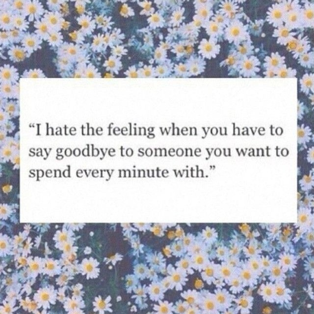Hate Saying Goodbye Quote 2 Picture Quote #1