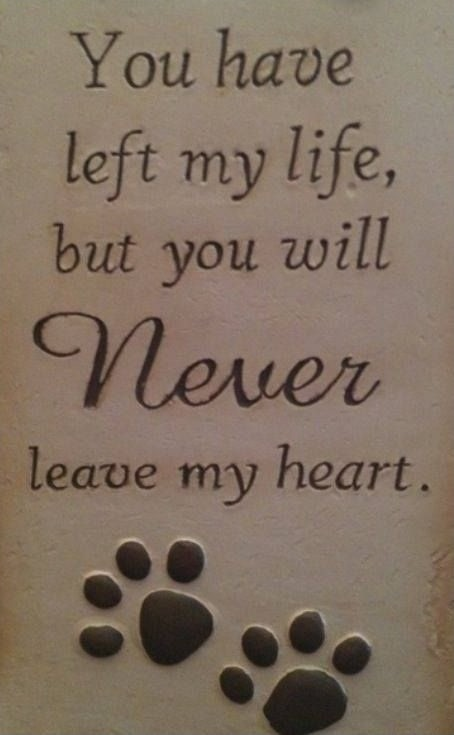Pet Grieving Quote 1 Picture Quote #1