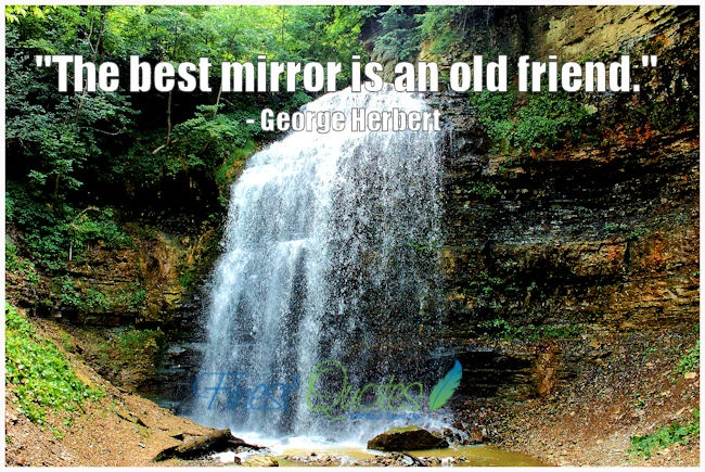 Old Friends Quote 1 Picture Quote #1