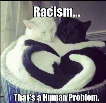 Racism... that's a human problem Picture Quote #1