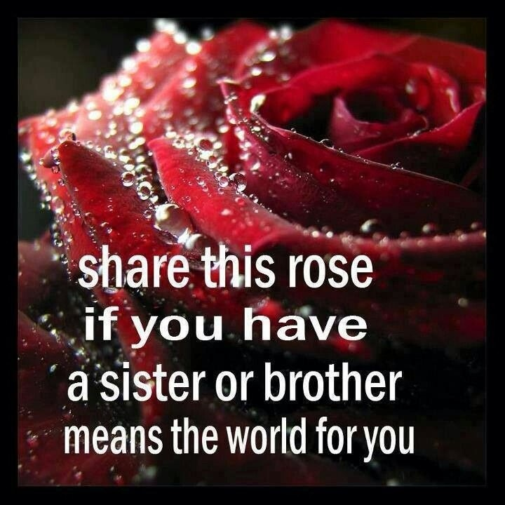 Brother Sister Love Quote 1 Picture Quote #1