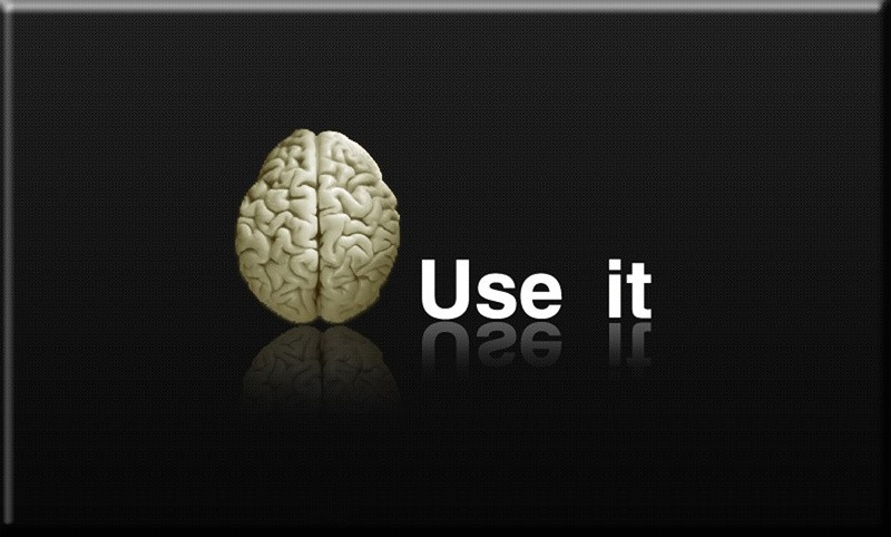 Use Your Brain Quote 1 Picture Quote #1