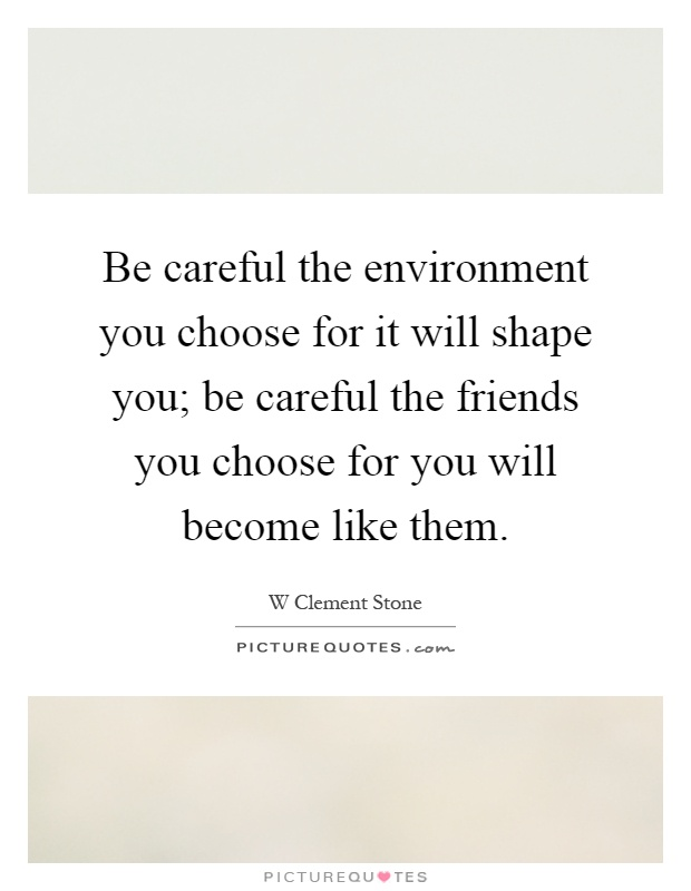 Be careful the environment you choose for it will shape you; be careful the friends you choose for you will become like them Picture Quote #1