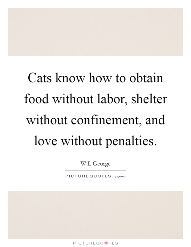 Cats know how to obtain food without labor, shelter without confinement, and love without penalties Picture Quote #1