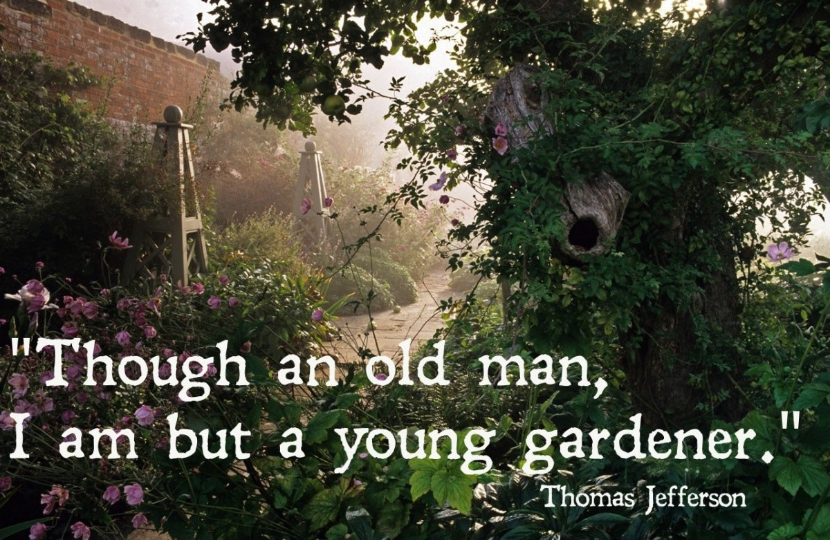 Garden Quote 2 Picture Quote #1