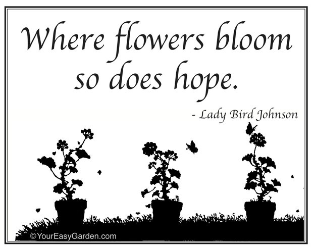 Garden Quote 6 Picture Quote #1