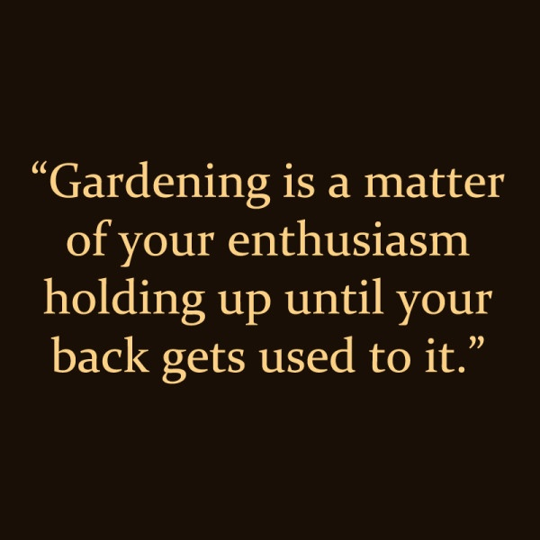 Garden Quote 10 Picture Quote #1