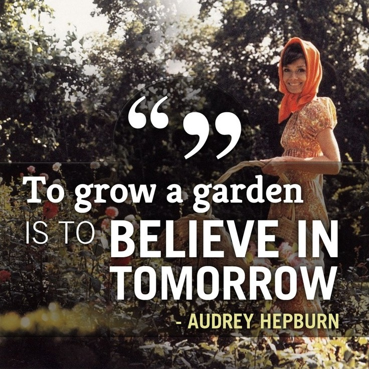 Garden Quote 14 Picture Quote #1