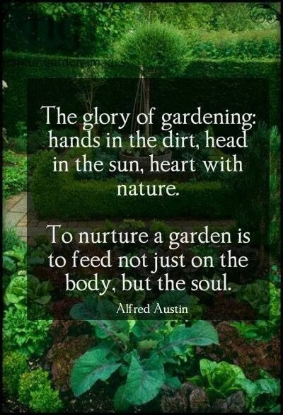 Garden Quote 7 Picture Quote #1