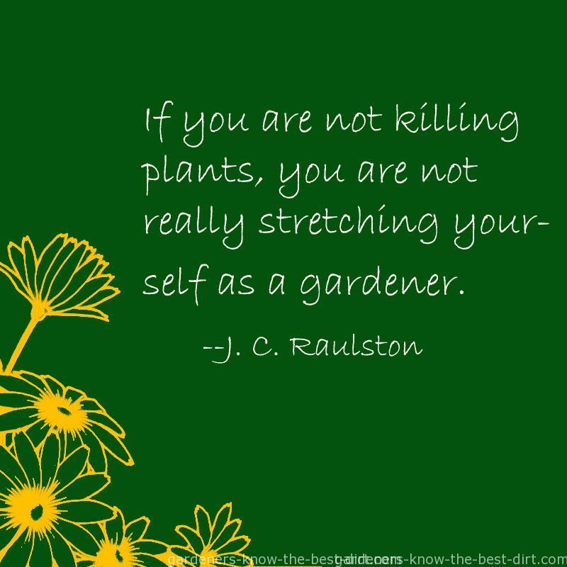 Gardening Quotes Gardening Sayings Gardening Picture