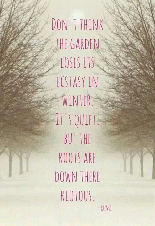 Best Garden Quote 3 Picture Quote #1
