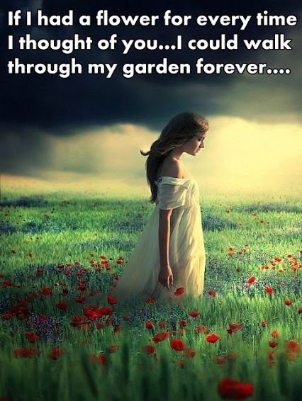 Flower Garden Quote 1 Picture Quote #1