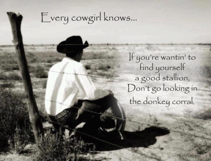 Cowgirl Quote 12 Picture Quote #1