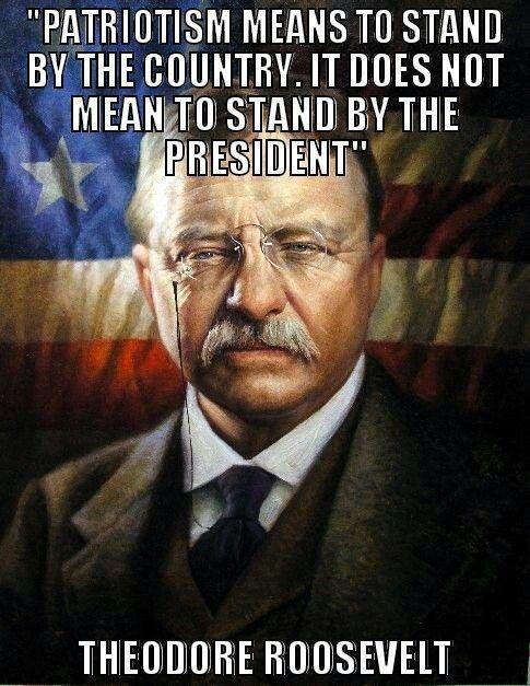 Patriotism Quote 1 Picture Quote #1