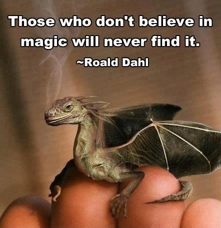Magic Quote 3 Picture Quote #1