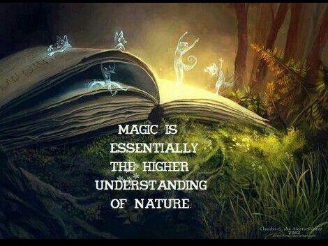 Fairy Magic Quote 1 Picture Quote #1