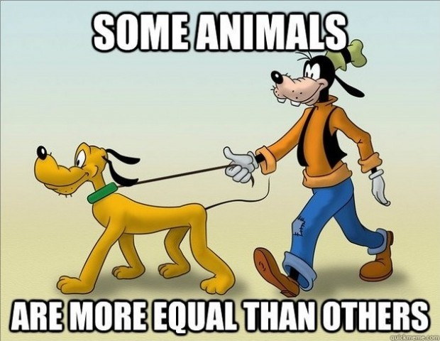 Animal Farm Quotes Animal Farm Equality Quote  Quote Number 607390  Picture Quotes