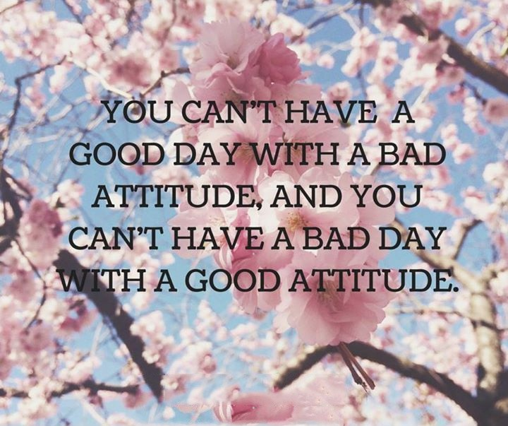 Bad Attitude Quote 1 Picture Quote #1