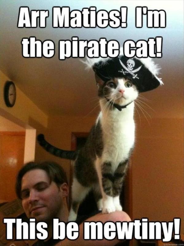 Funny Pirate Quote 1 Picture Quote #1