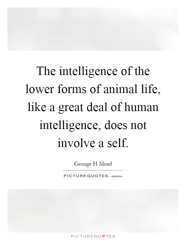 The intelligence of the lower forms of animal life, like a great deal of human intelligence, does not involve a self Picture Quote #1